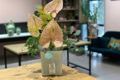 Blumenabonnement mit Anthurien