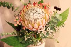 Blumenabonnement mit Königsprotea